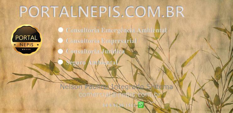 Soluções Empresariais Consultoria Ambiental – Portal NEPIS